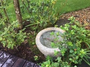 手水鉢 二つ庭の家